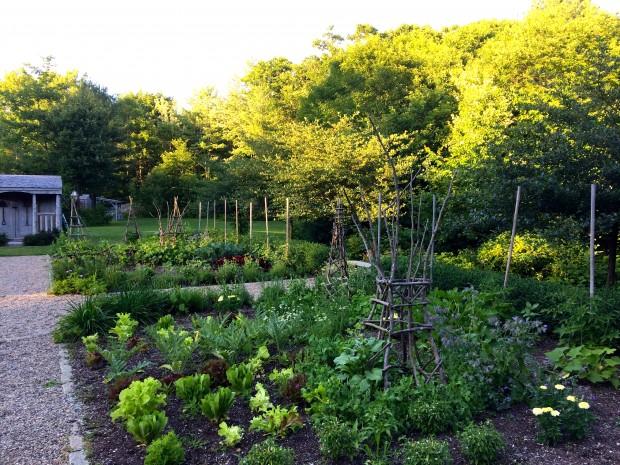 Earth garden 1